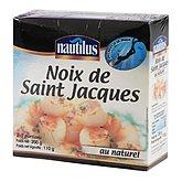 Noix de St Jacques Nautilus